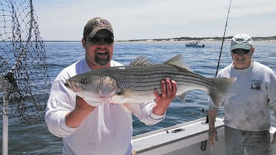 Mistie C Charters Striped Bass June 2015